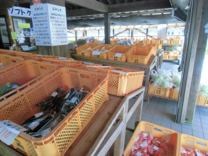 日南市-酒谷道の駅の朝採れ野菜